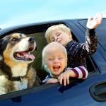 Hundeversicherung in Österreich