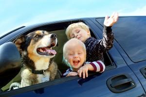 Hund als Familien-Mitglied